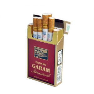 gudang garam international